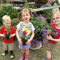 Why We Love Blooms and Berries Farm Market