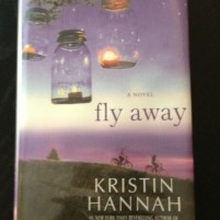 Summer Vacation Reading – Fly Away