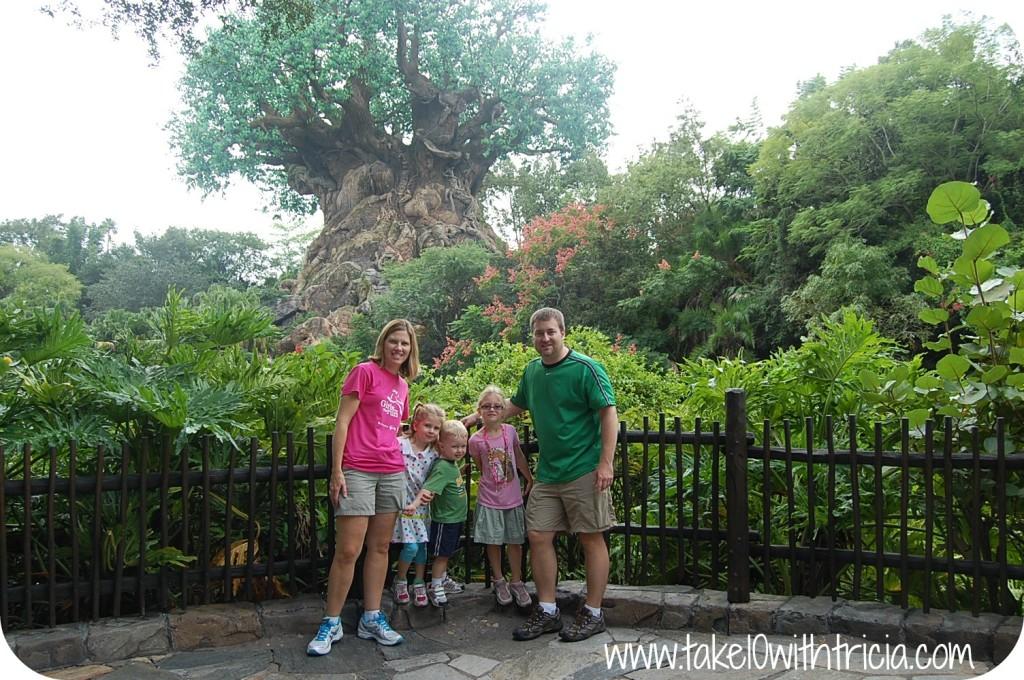 Wades-Tree-of-Life-Disney