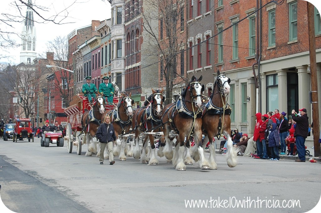 reds-opening-day-parade-clydesdales