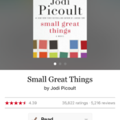 Book: small great things